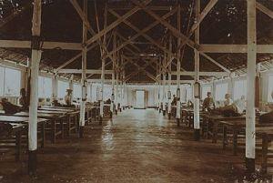 Ziekenhuis Timbang Langkat 1905 (93300)