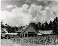 6703-hermana-missiehospitaal-bij-manado-1945